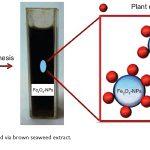 نانو ذرات مغناطیسی اکسید آهن