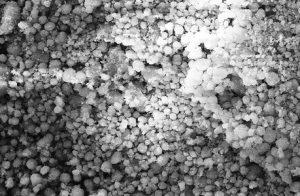 نانو ذرات کربنات کلسیم